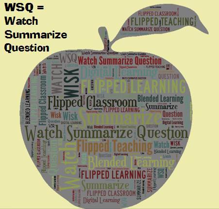 WSQ Watch Summarize Question